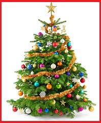 Como se celebra la navidad